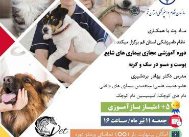 بیماری های شایع پوست و مو در سگ و گربه