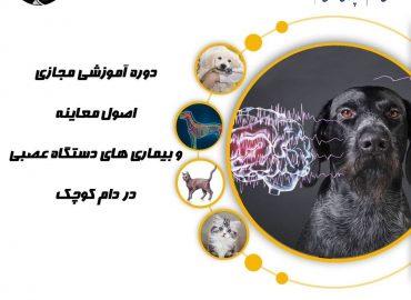 اصول معاینه و بیماری های دستگاه عصبی در دام کوچک