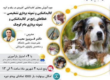 کالبدگشایی و نمونه برداری تشخیصی در سگ و گربه