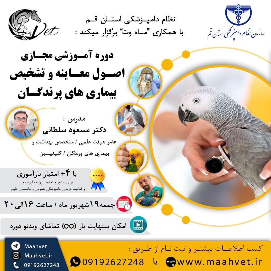 اصول معاینه پرندگان زینتی